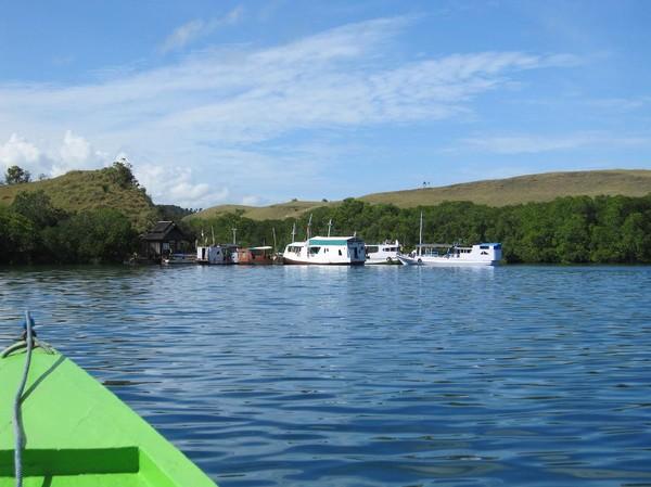Vi närmar oss hamnen i Loh Buaya på Rinca island.
