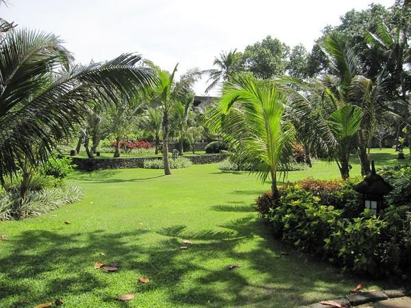 Bali Hyatt, Sanur beach, Bali.