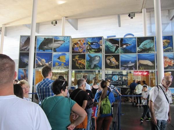 L' Aquarium deBarcelona.