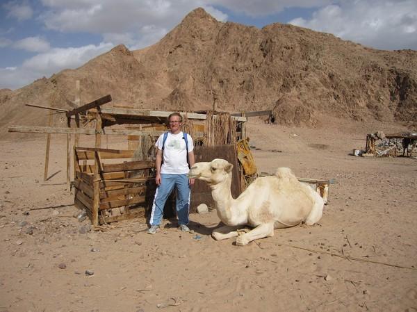 Vi stannade till hos en man med kamel som ville bjuda på te.