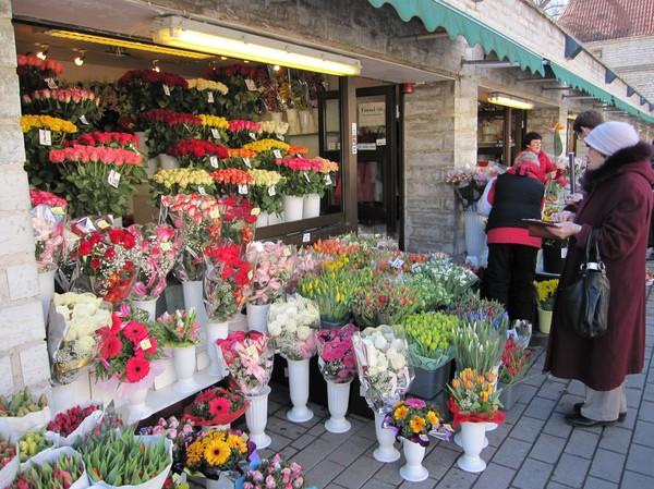 Glöm inte att ha udda antal blommor i buketten om det inte är sorg. Gamla staden, Tallinn.
