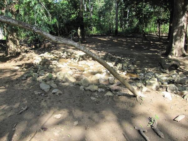 Vattenhål där Komodovaranerna brukar hålla till, Komodo island.