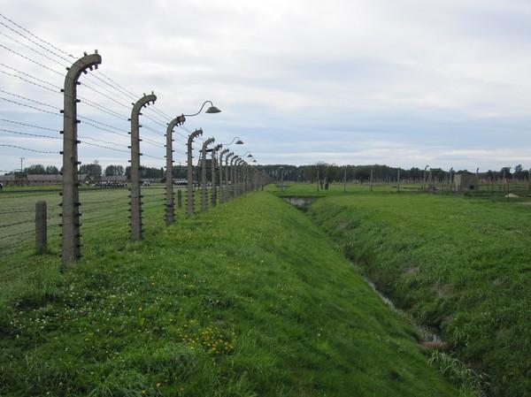 Elstängsel med ruiner i bakgrunden, Birkenau.