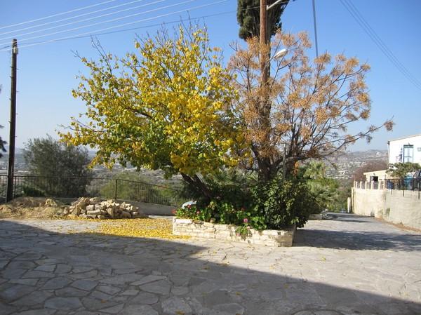 Byn Choirokoitia några mil väster om Larnaka.
