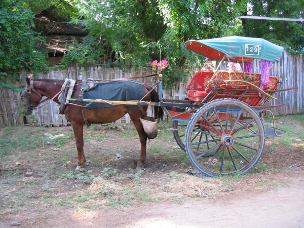 Mitt färdmedel runt Bagan första dagen.
