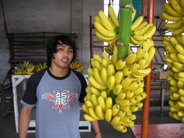 Fruktförsäljare General Santos.