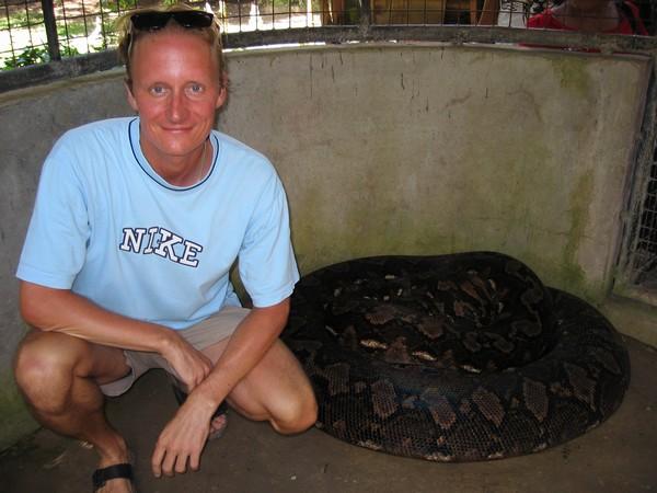 Den i fångenskap uppfödda pytonormen Prony, 23 fot lång och 250 kilo tung, Albuquerque, Bohol.