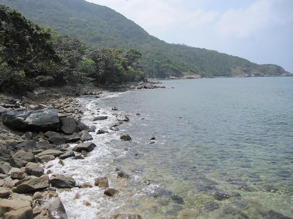 Mördande vacker natur, men särskilt djungel är svårt att skildra på ett bra sätt med hjälp av foto.