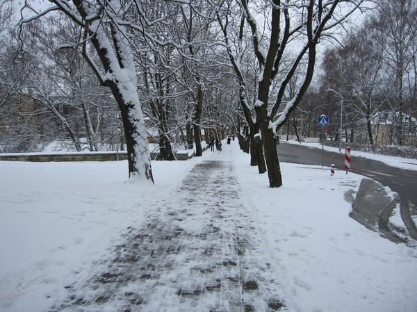 Backen upp från mitt hotell över till gamla staden, centrala Tallinn. Gatan heter Falgi tee.