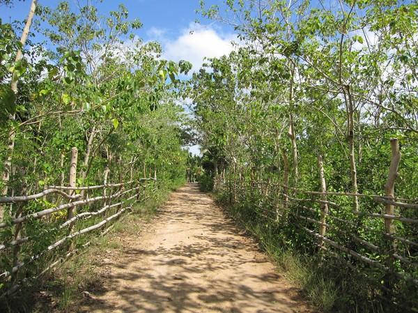 Bantayan runt, onsdagen den 28 oktober.