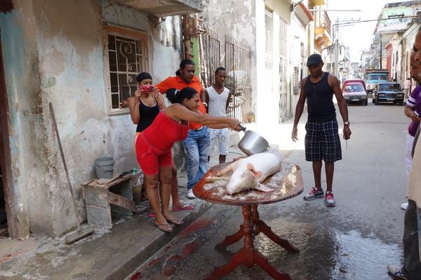 Styckning av gris, Centro Habana, Havanna.