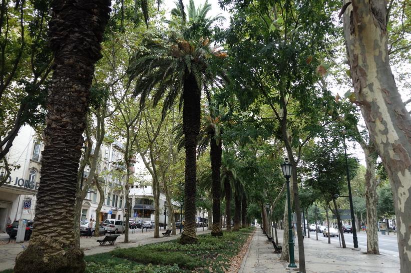 Avenida da Liberdade, Lissabon.