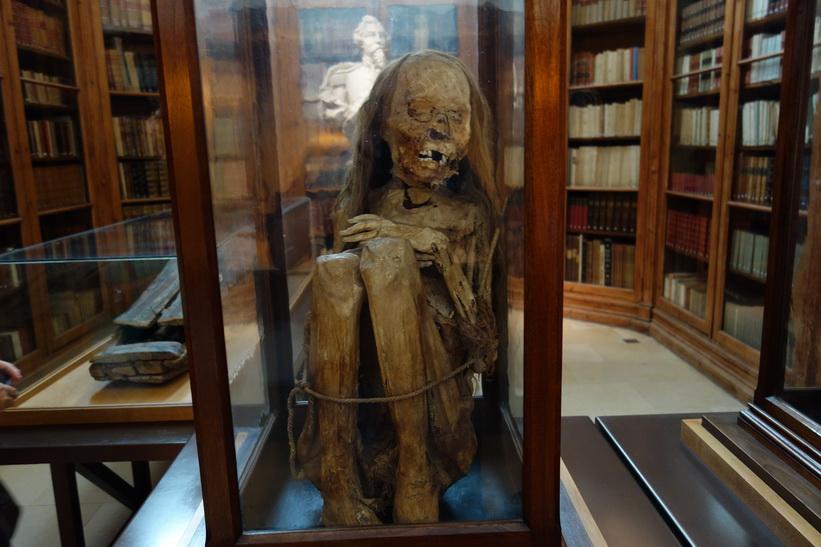 Peruansk mumie i arkeologsiska museet i anslutning till Convento do Carmo, Lissabon.