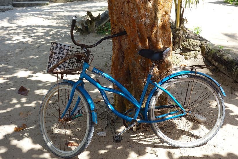 Cykeln jag hyrde idag. På bilden med punktering på bakdäcket, Boca del Drago, Isla Colon.