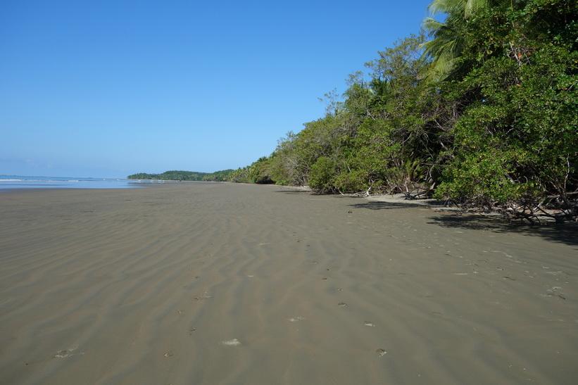 Den vackra stranden i Uvita.