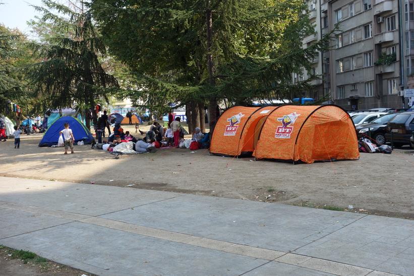 Flyktingar som tältar i parken vid busstationen i Belgrad.
