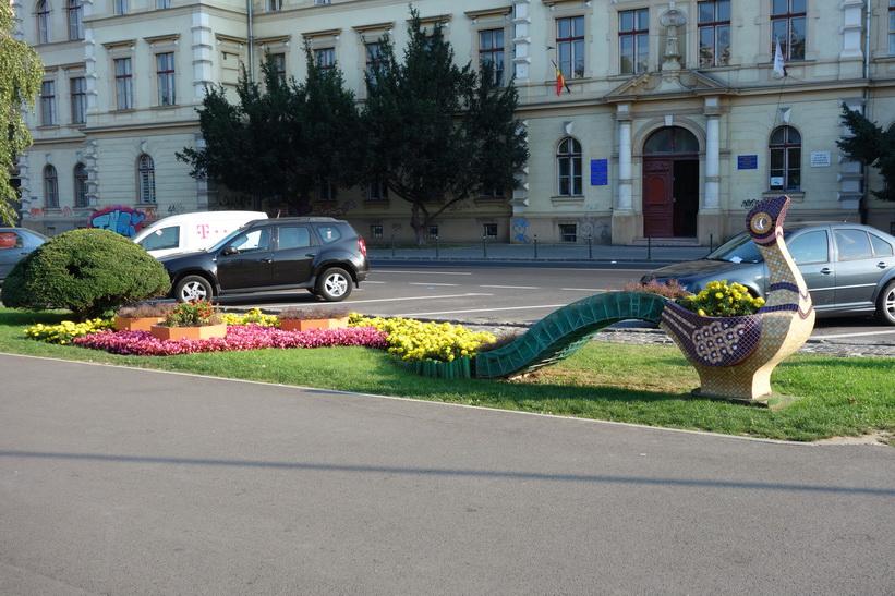 Parcul central, Brașov.