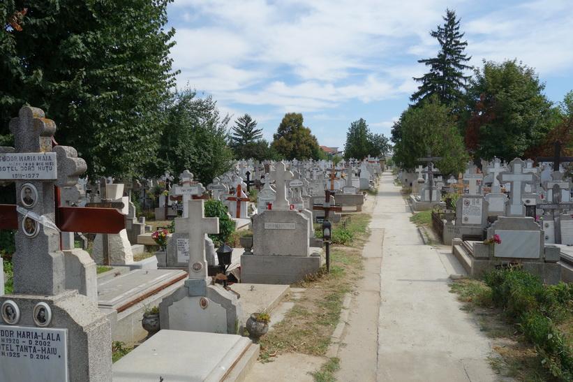 Gravstenar på kyrkogården Ghencea cemetery i Bukarest.