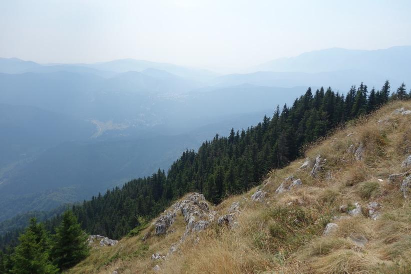 Mount Postăvarul.