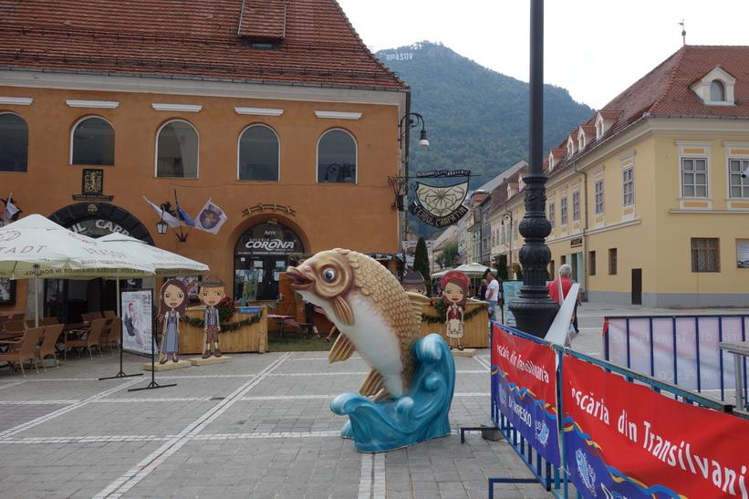 Festival i Brașov.
