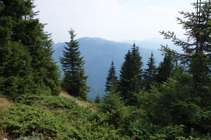 Mount Postavarul-7