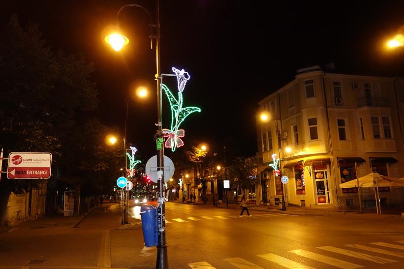 Blommor längs gatan på väg hem till hotellet, Varna.