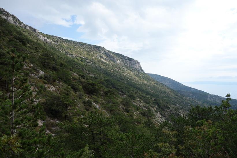 Den vackra naturen under vandringen upp till Vidova Gora.