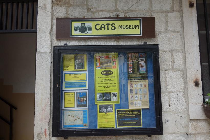 Kotor har ett kattmuseum som tyvärr var stängt under min vistelse i staden.