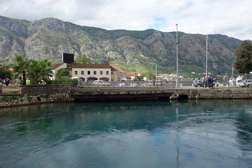 Del av stadsdelen Skaljari och hamnen i Kotor.