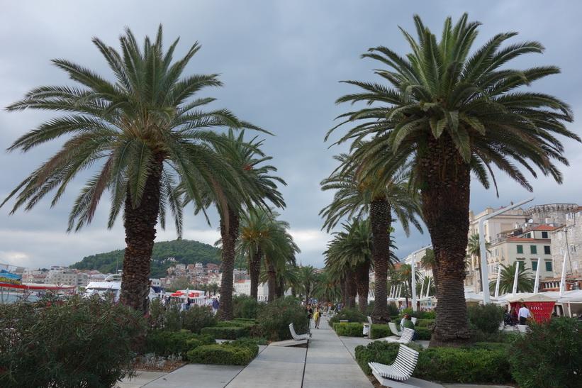 Rivan i centrala Split.