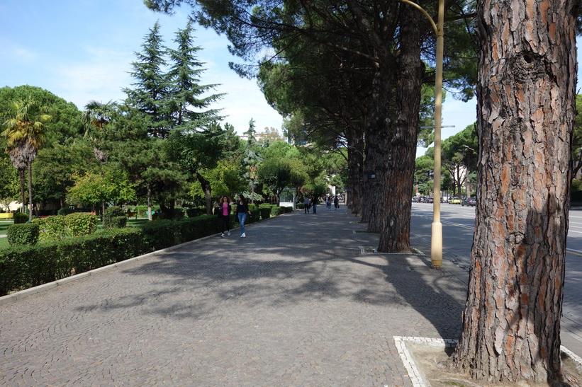 Parken vid Dëshmorët e Kombit Boulevard, Tirana.