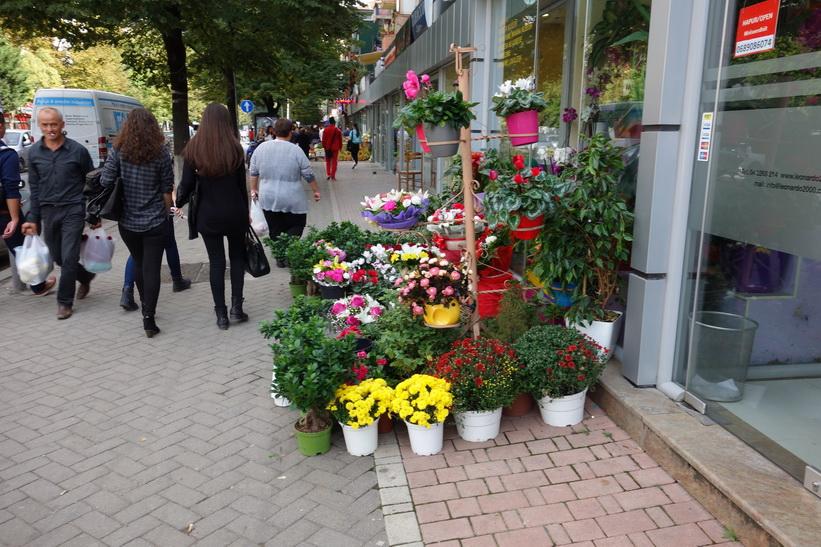 Försäljning av blommor i centrala Tirana.