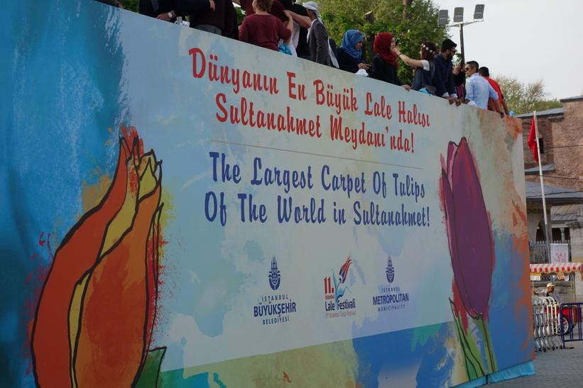 Världens största tulpanbädd i Sultanahmet, Istanbul.