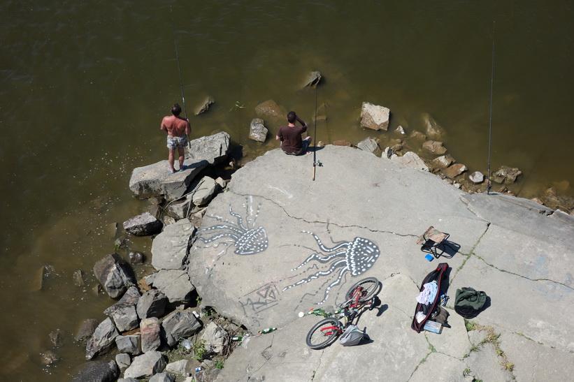 Fiske i floden Vistula nedanför Śląsko-Dąbrowski-bron, Warszawa.