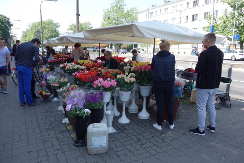 Blommor till salu på Plac Wilsona, Warszawa.