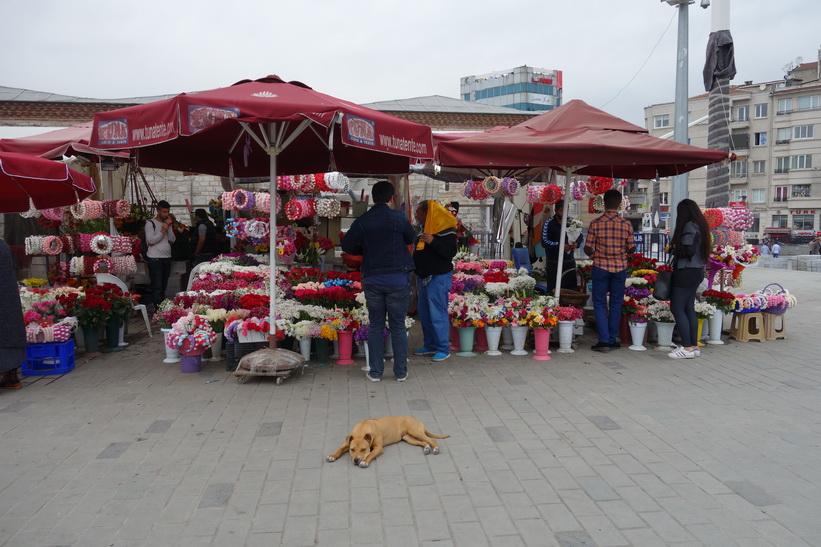 Försäljning av blommor på Taksim-torget, Istanbul.