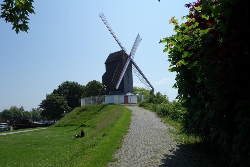 Väderkvarn i utkanten av Brygge. En mycket populär turistattraktion.