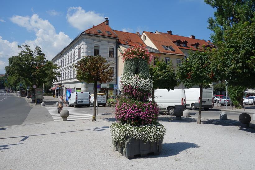 Levstikov trg, gamla staden, Ljubljana.