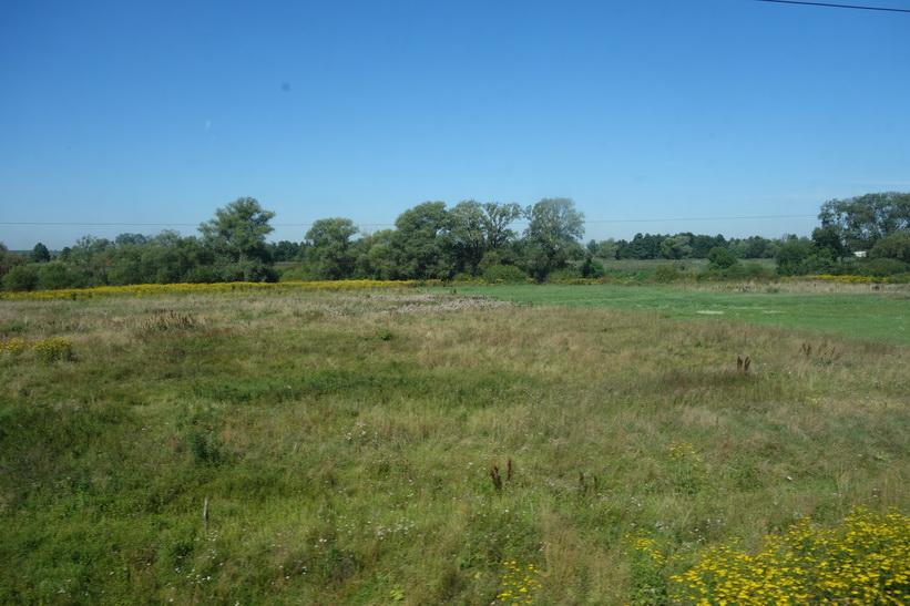 Naturen alldeles utanför Lviv. Fortfarande platt landskap. Tågresan mellan Lviv och Uzhhorod.