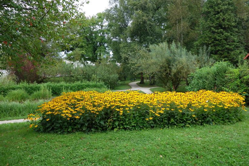Botaniska trädgården, Ljubljana.