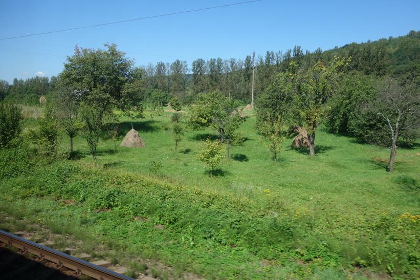 Här börjar terrängen bli lite mer kuperad. Tågresan mellan Lviv och Uzhhorod.