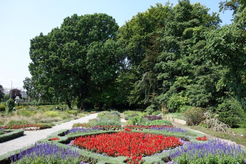 Botaniska trädgården i Zagreb.