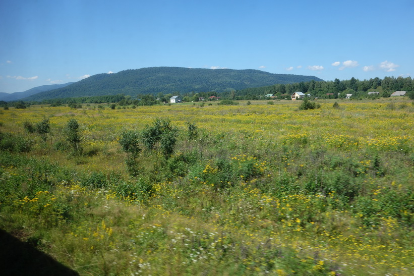 Vackert sommarlandskap som inte är helt olikt Sverige. Tågresan mellan Lviv och Uzhhorod.