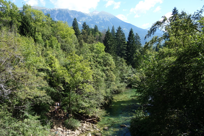 Vintgar Gorge.