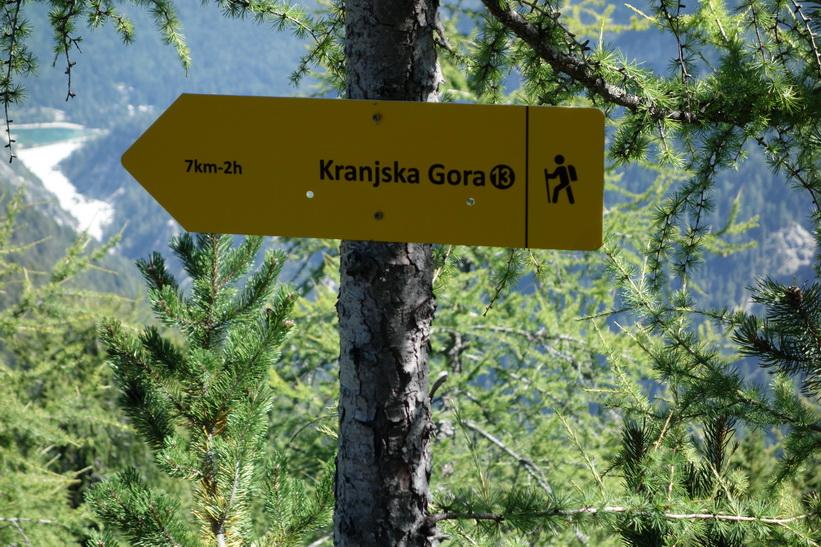 Längs sträckan mellan Vitranc och Ciprnik. Vandringen från Kranjska Gora upp till Ciprnik.
