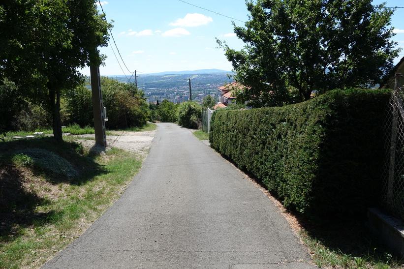 Promenaden ner till staden från Pécs TV-torn.