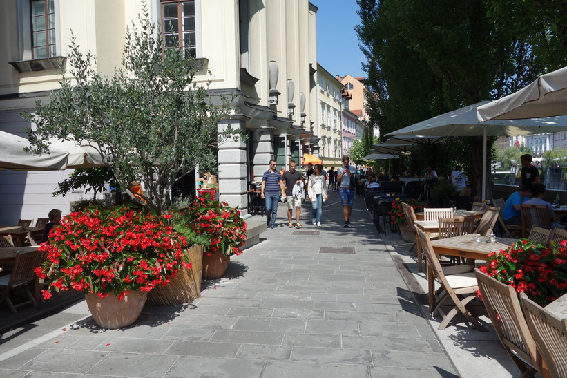 Promenaden vid floden Ljubljanica i centrala Ljubljana.