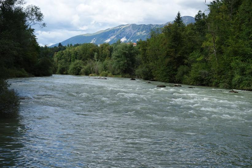 Sava-floden, Radovlica.