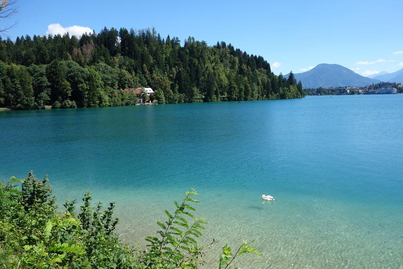 Del av Lake Bled, Bled.