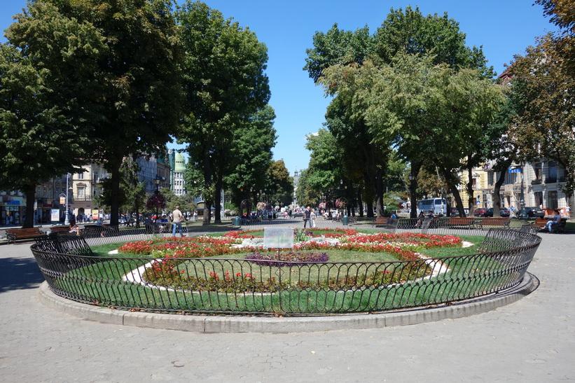 Mitskevycha Square, gamla staden i Lviv.